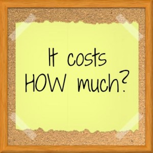 Cost of Running A Successful Blog