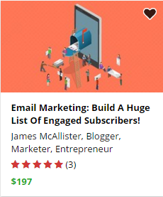 review of email marketing success