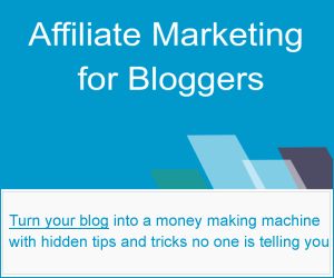 Review of Affiliate Marketing For Bloggers – Why Buy From Enstine Muki?