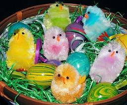 chicks to symbolize a new beginning