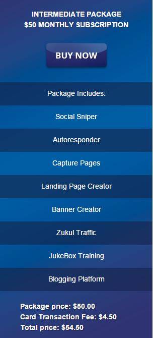 profit from marketing tools